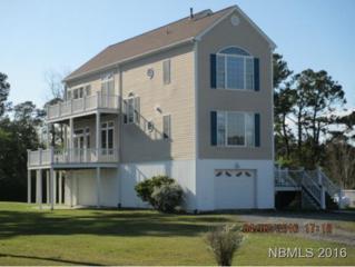 214 Straits Haven Road, Beaufort, NC 28516 (MLS #90103350) :: Century 21 Sweyer & Associates