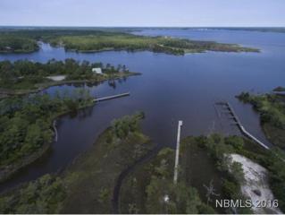337 Cabin Creek Road, Merritt, NC 28556 (MLS #90104301) :: Century 21 Sweyer & Associates