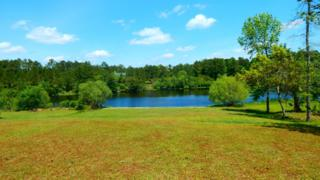 4038 Forest Lake Drive SW, Shallotte, NC 28470 (MLS #100009454) :: Century 21 Sweyer & Associates