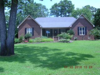 204 Castle Ridge Road, New Bern, NC 28562 (MLS #100023467) :: Century 21 Sweyer & Associates