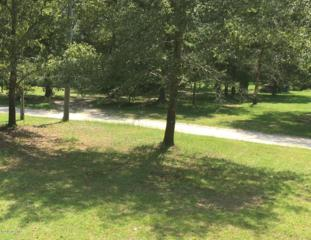 Lot 16 Shelter Creek Drive, Burgaw, NC 28425 (MLS #100024101) :: Century 21 Sweyer & Associates