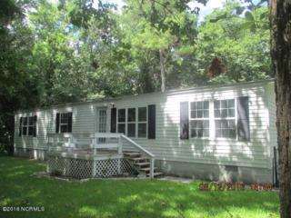 424 W Branch Drive, Newport, NC 28570 (MLS #100025842) :: Century 21 Sweyer & Associates