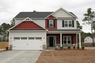 308 Emma Court, Jacksonville, NC 28540 (MLS #100029924) :: Century 21 Sweyer & Associates