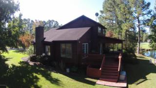 105 Edmonds Lane, Arapahoe, NC 28510 (MLS #100034489) :: Century 21 Sweyer & Associates