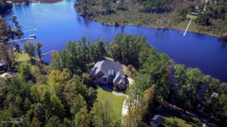 380 Freshwater Drive, Blounts Creek, NC 27814 (MLS #100034826) :: Century 21 Sweyer & Associates
