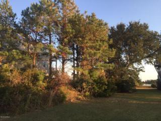 221 Waterway Drive, Sneads Ferry, NC 28460 (MLS #100037401) :: Century 21 Sweyer & Associates