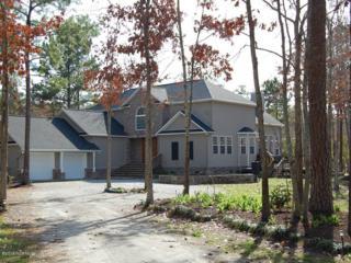 232 Park Lane, Oriental, NC 28571 (MLS #100037425) :: Century 21 Sweyer & Associates