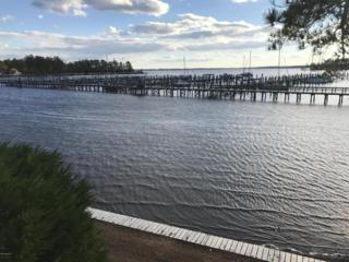 149 Riverboat Drive, Washington, NC 27889 (MLS #100041578) :: Century 21 Sweyer & Associates