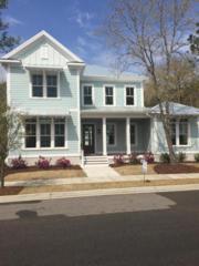 810 Midnight Channel Road, Wilmington, NC 28403 (MLS #100047665) :: Century 21 Sweyer & Associates