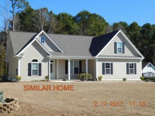 217 Echo Ridge Road, Swansboro, NC 28584 (MLS #100048106) :: Century 21 Sweyer & Associates