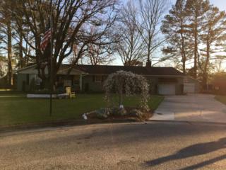 108 Beaufort Place, Washington, NC 27889 (MLS #100048365) :: Century 21 Sweyer & Associates
