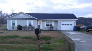211 Hackney Ridge Lane, Jacksonville, NC 28540 (MLS #100050060) :: Century 21 Sweyer & Associates