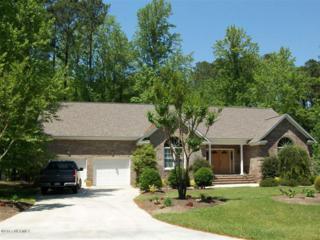 303 Potomac Drive, Chocowinity, NC 27817 (MLS #100050885) :: Century 21 Sweyer & Associates