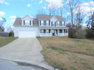 166 Louie Lane, Jacksonville, NC 28540 (MLS #100051957) :: Century 21 Sweyer & Associates