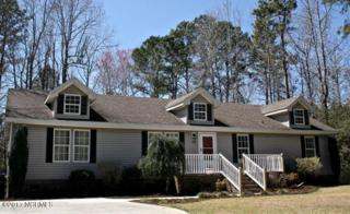 544 Groves Point Drive, Hampstead, NC 28443 (MLS #100054322) :: Century 21 Sweyer & Associates