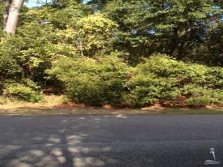 6177 Cottage Creek Road, Southport, NC 28461 (MLS #20678010) :: Century 21 Sweyer & Associates