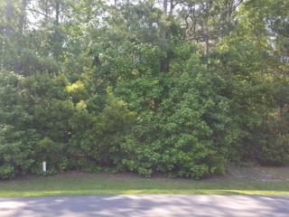 104 Seascape Drive, Sneads Ferry, NC 28460 (MLS #40200953) :: Century 21 Sweyer & Associates