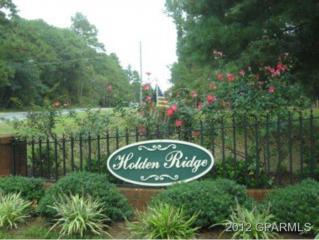 411 Anna Lane, Snow Hill, NC 28580 (MLS #50106757) :: Century 21 Sweyer & Associates