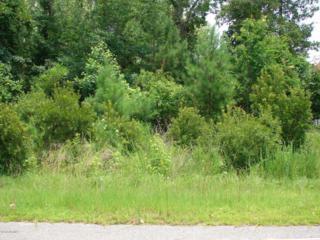 105 Barry Lane, Jacksonville, NC 28540 (MLS #80168533) :: Century 21 Sweyer & Associates