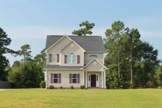 121 Deer Crossing Road, Jacksonville, NC 28540 (MLS #80169654) :: Century 21 Sweyer & Associates