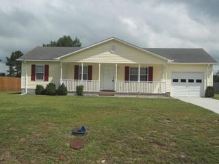 205 Redberry Drive, Richlands, NC 28574 (MLS #80177095) :: Century 21 Sweyer & Associates