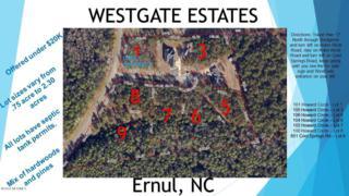 101 Howard Circle, Ernul, NC 28527 (MLS #90099408) :: Century 21 Sweyer & Associates