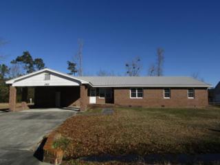 260 Forest Park Circle, Bayboro, NC 28515 (MLS #90103010) :: Century 21 Sweyer & Associates