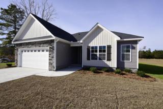 106 Trellis Lane, Vanceboro, NC 28586 (MLS #90103453) :: Century 21 Sweyer & Associates