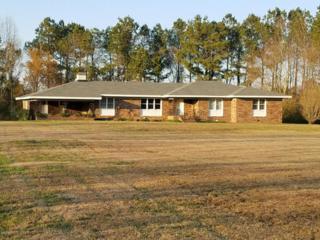 465 Camp Kirkwood Road, Watha, NC 28478 (MLS #100039739) :: Century 21 Sweyer & Associates