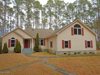 101 Spicers Creek Drive, Oriental, NC 28571 (MLS #100044582) :: Century 21 Sweyer & Associates