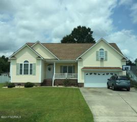 114 Mom Lane, New Bern, NC 28562 (MLS #100046523) :: Century 21 Sweyer & Associates