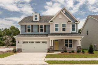 720 Antler Drive, Wilmington, NC 28409 (MLS #100002406) :: Century 21 Sweyer & Associates