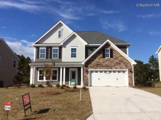 6119 Willow Glen Drive, Wilmington, NC 28412 (MLS #100013712) :: Century 21 Sweyer & Associates
