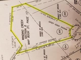 205 Winding Creek Road, Rocky Point, NC 28457 (MLS #100021865) :: Century 21 Sweyer & Associates