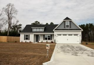 205 Shady Willow Lane, Jacksonville, NC 28546 (MLS #100027449) :: Century 21 Sweyer & Associates
