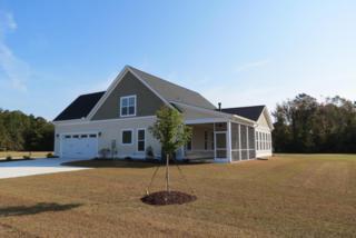 711 Southern Plantation Drive N, Oriental, NC 28571 (MLS #100029117) :: Century 21 Sweyer & Associates