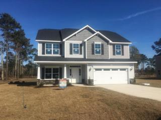 313 Red Cedar Drive Lot 51, Sneads Ferry, NC 28460 (MLS #100038076) :: Century 21 Sweyer & Associates