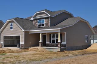587 Brookfield Drive, Winterville, NC 28590 (MLS #100046605) :: Century 21 Sweyer & Associates