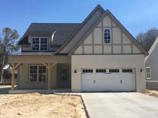 1025 Pandion Drive, Wilmington, NC 28411 (MLS #100007450) :: Century 21 Sweyer & Associates