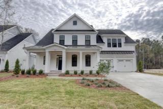 1041 Pandion Drive, Wilmington, NC 28411 (MLS #100032398) :: Century 21 Sweyer & Associates