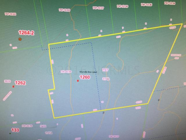 1260 Hwy 172, Sneads Ferry, NC 28460 (MLS #100001274) :: Century 21 Sweyer & Associates