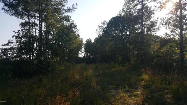 239 George Ii Highway SE, Winnabow, NC 28479 (MLS #100015008) :: The Keith Beatty Team