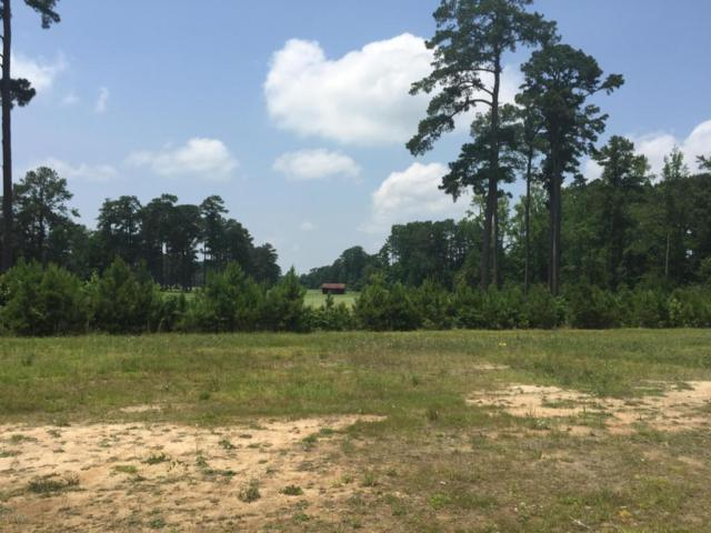 Lot 9 Cy Williams Boulevard, Lumberton, NC 28360 (MLS #100016295) :: Century 21 Sweyer & Associates