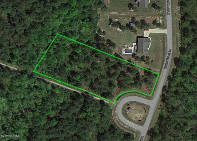 12 Necessity Lane, Hertford, NC 27944 (MLS #100017839) :: Century 21 Sweyer & Associates