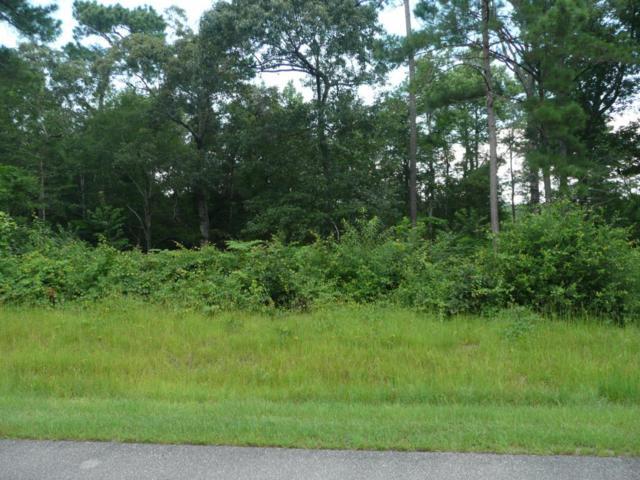 119 Kings Harbor Drive, Holly Ridge, NC 28445 (MLS #100022762) :: Century 21 Sweyer & Associates