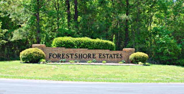 Lot 35 Straight Road, Oriental, NC 28571 (MLS #100029189) :: Donna & Team New Bern