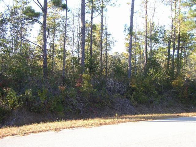 136 Sandy Creek Drive, Leland, NC 28451 (MLS #100029291) :: Century 21 Sweyer & Associates