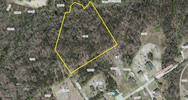 Tract 1 Chickadee Lane, Richlands, NC 28574 (MLS #100030350) :: Century 21 Sweyer & Associates