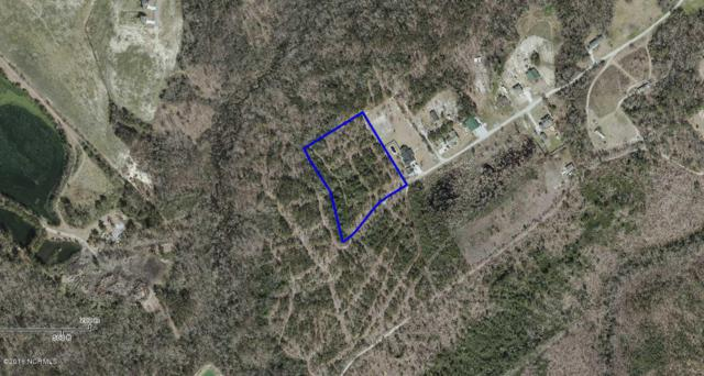 Tract 3 Angel Haven Lane, Richlands, NC 28574 (MLS #100030384) :: Century 21 Sweyer & Associates