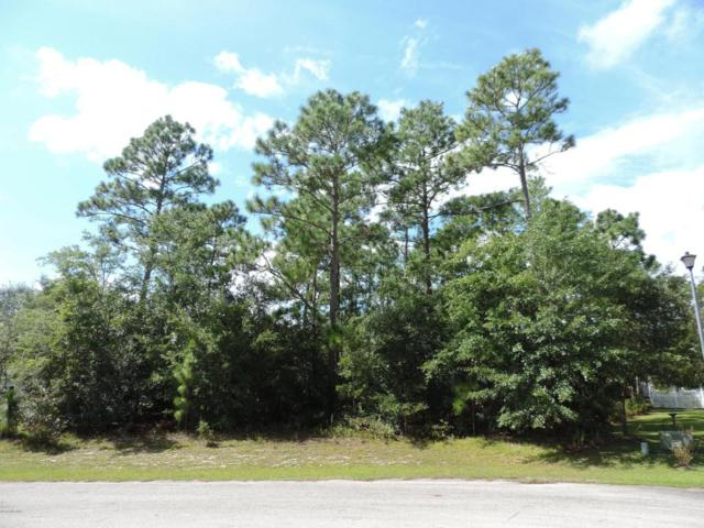 303 Gambrel Way, Cape Carteret, NC 28584 (MLS #100030471) :: Century 21 Sweyer & Associates